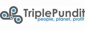 triple_pundit_logo